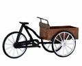 Lemax Carry Bike